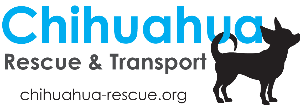 Chihuahua Rescue & Transport
